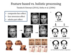 Feature based vs. holistic processing
