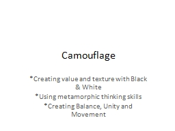 Camouflage *Creating value and texture with Black & White