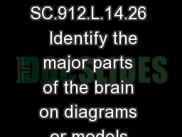 The Human Brain SC.912.L.14.26   Identify the major parts of the brain on diagrams or models.