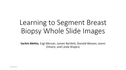 Learning to Segment Breast Biopsy Whole Slide Images
