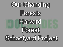 Our Changing Forests Harvard Forest Schoolyard Project