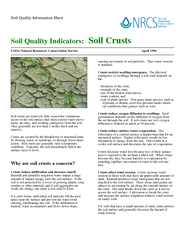 How does flooding effect soil quality powerpoint for Soil quality indicators