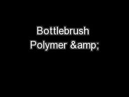 Bottlebrush Polymer &