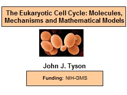 The Eukaryotic Cell Cycle: Molecules, Mechanisms and Mathematical Models