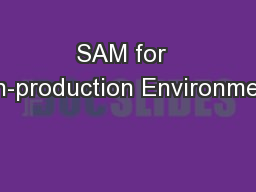SAM for  Non-production Environments