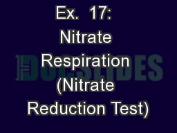 Ex.  17:  Nitrate Respiration (Nitrate Reduction Test) PowerPoint PPT Presentation
