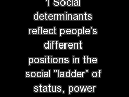 1 Social determinants reflect people's different positions in the social