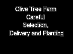 Olive Tree Farm Careful Selection, Delivery and Planting PDF document - DocSlides