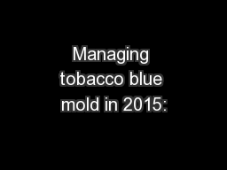 Managing tobacco blue mold in 2015: