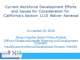 Current Workforce Development Efforts and Issues for Consideration for