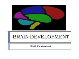 BRAIN DEVELOPMENT Child Development