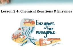 Lesson 2.4: Chemical Reactions & Enzymes