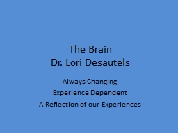 The  Brain Dr.  Lori Desautels