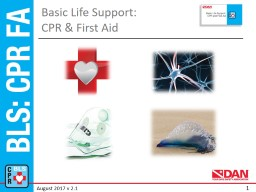 Basic Life Support:  CPR & First Aid