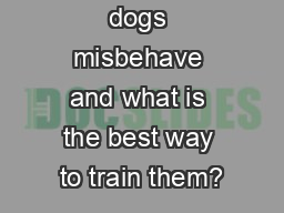 Why do our dogs misbehave and what is the best way to train them? PowerPoint PPT Presentation