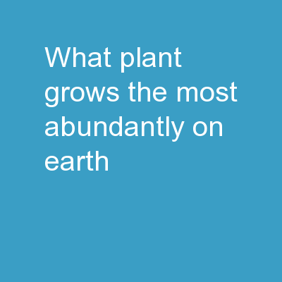 What  plant  grows the most abundantly on Earth?