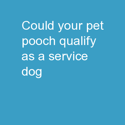COULD YOUR PET POOCH QUALIFY AS A SERVICE DOG?