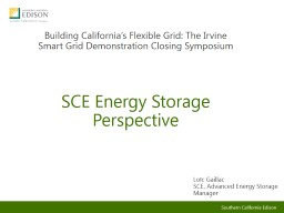 SCE Energy Storage Perspective