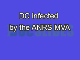 DC infected by the ANRS MVA