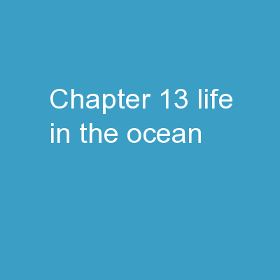 Chapter  13: Life in the Ocean