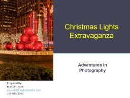 Christmas Lights Extravaganza