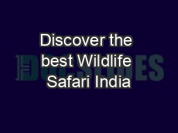 Discover the best Wildlife Safari India