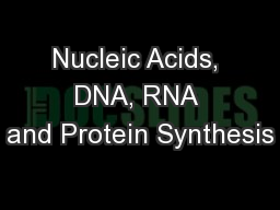 Nucleic Acids, DNA, RNA and Protein Synthesis
