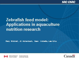 Zebrafish feed model: Applications in aquaculture nutrition research
