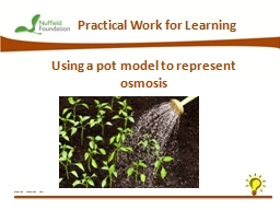 Practical Work for Learning
