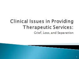 Clinical Issues in Providing Therapeutic Services: