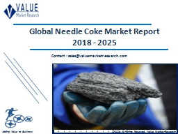 Needle Coke Market Share, Global Industry Analysis Report 2018-2025