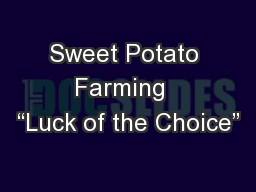 """Sweet Potato Farming  """"Luck of the Choice"""" PowerPoint PPT Presentation"""
