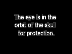 The eye is in the orbit of the skull for protection.