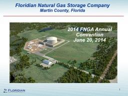 1 Floridian Natural Gas Storage Company