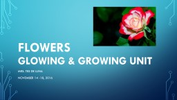 FLOWERS GLOWING & GROWING UNIT PowerPoint PPT Presentation