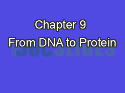 Chapter 9 From DNA to Protein