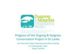 Progress of the Dugong & Seagrass Conservation Project in
