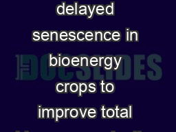 Gene discovery for delayed senescence in bioenergy crops to improve total biomass production