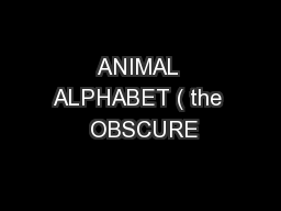 ANIMAL ALPHABET ( the  OBSCURE