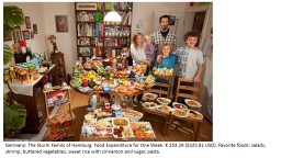 Germany: The Sturm Family of Hamburg. Food Expenditure for One Week: € 253.29 ($325.81 USD). Favo