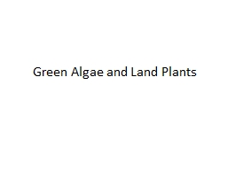 Green Algae and Land Plants