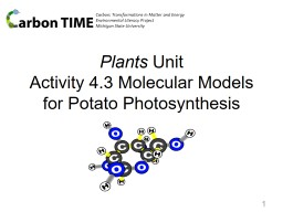 Carbon: Transformations in Matter and Energy PowerPoint Presentation, PPT - DocSlides