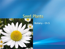 Seed Plants Botany - Ch 5