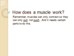 How does a muscle work? Remember, muscles can only contract so they can only