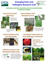 Emerging Pests and Pathogens Research Unit