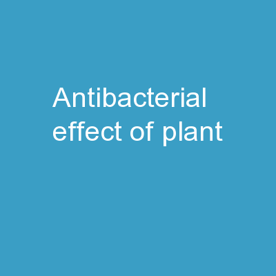 Antibacterial effect of plant