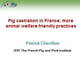 Patrick Chevillon IFIP, The French Pig and Pork Institute