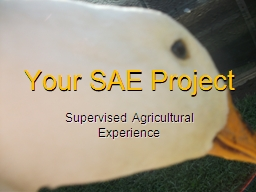 Your SAE Project Supervised Agricultural Experience