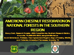 AMERICAN CHESTNUT RESTORATION ON NATIONAL FORESTS IN THE SOUTHERN REGION