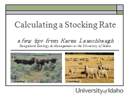 Calculating a Stocking Rate